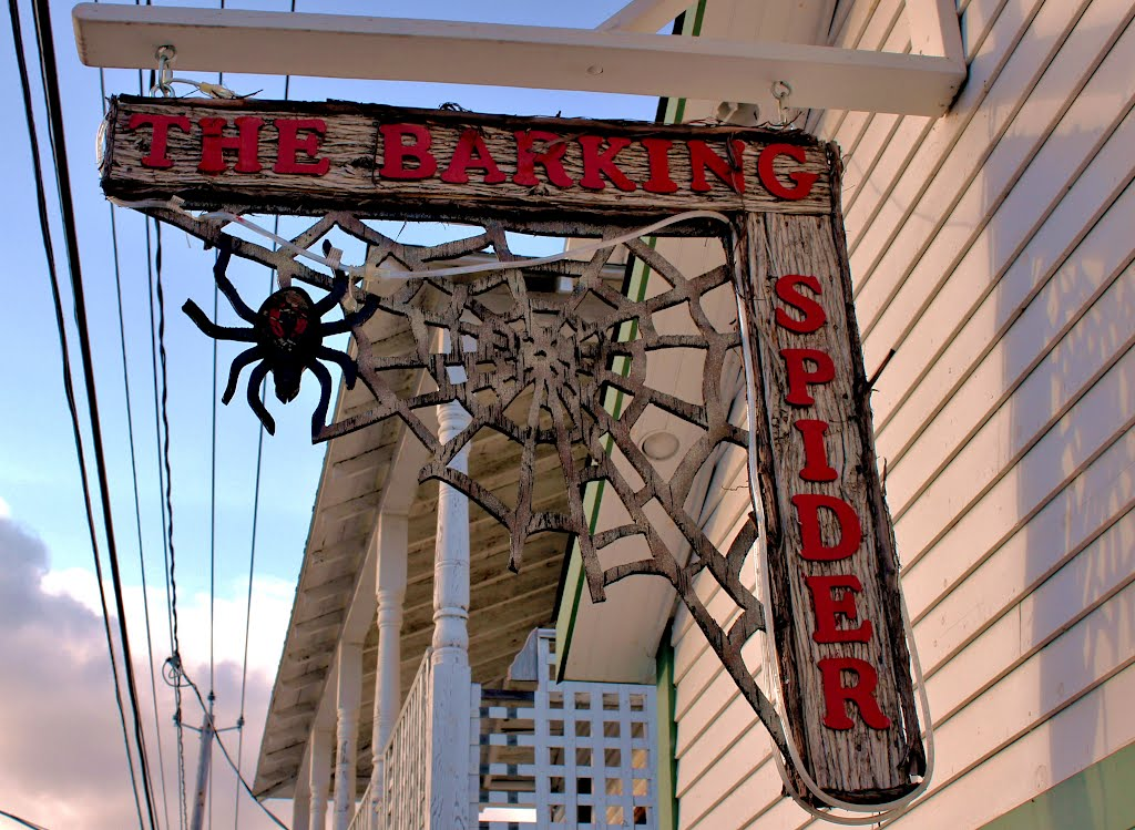 Barking Spider Bar